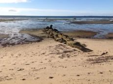 Our jetty - appears and disappears with the tide