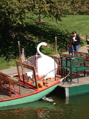 Swan Rides - a Boston tradition !