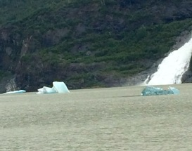 Calved ice off glacier.