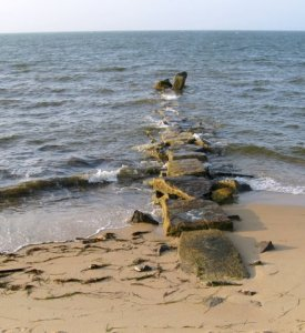 Jetty-waves_7-08_IMG_1157_Lill