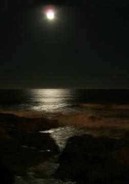 moonlight-1396957