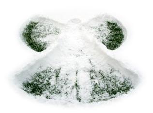 susan-s-snow-angel-1383171