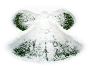 susan-s-snow-angel-1383171