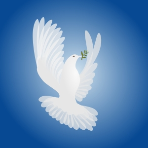 white-dove-spirit-of-peace-1244811
