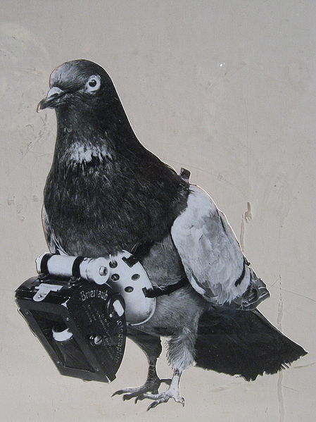 449px-dr_julius_neubronner_patented_a_miniature_pigeon_camera_activated_by_a_timing_mechanism_1903