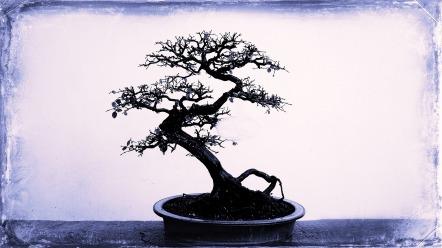 tree-664198_1920
