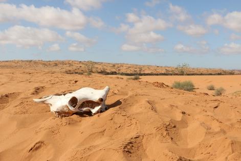 desert-1761930_1920