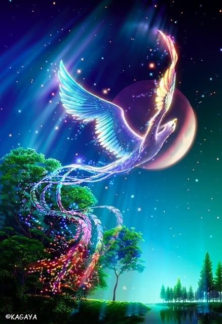 bird_of_paradise_kagaya